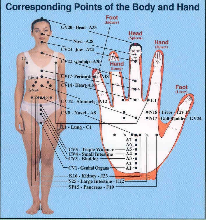 hand-body